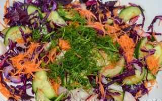 салат из краснокочанной капусты свежей рецепт