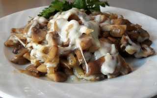 легкий салат с грибами шампиньонами