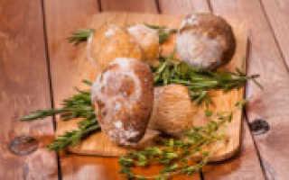 Как заморозить свежие грибы