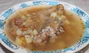 суп из индоутки рецепты с фото