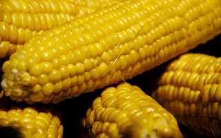 Как сделать кукурузу мягкой после